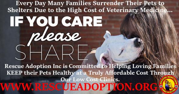 Rescue Adoption Mobile Clinic